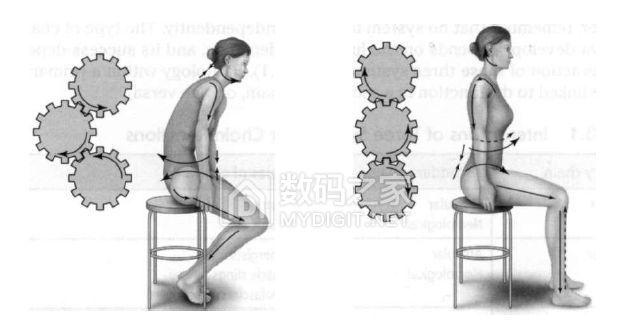 人体正确坐姿对比.三个齿轮.jpg