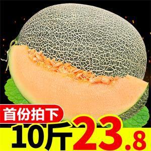 O1CN01dZkDFF1rSaS0vee1A_!!0-item_pic.jpg