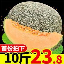 怡鹭烧仙草9.9元!香菇牛肉拌饭酱21.8元!新疆哈密瓜一箱10斤28.8元!
