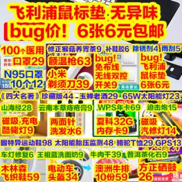 bug!6张飞利浦鼠标垫6元 100口罩29 双控开关9 夏科32G内存9 玉蝉老酒29 头盔34
