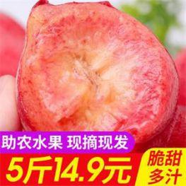 松花蛋皮蛋10枚19.9元!龙岩下洋泡鸭爪14.8元!水蜜桃现摘现发5斤14.9元!