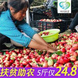 水果黄瓜5斤包邮14.9元!油桃子现货5斤14.8元!猴头菇冲泡米稀19.9元!